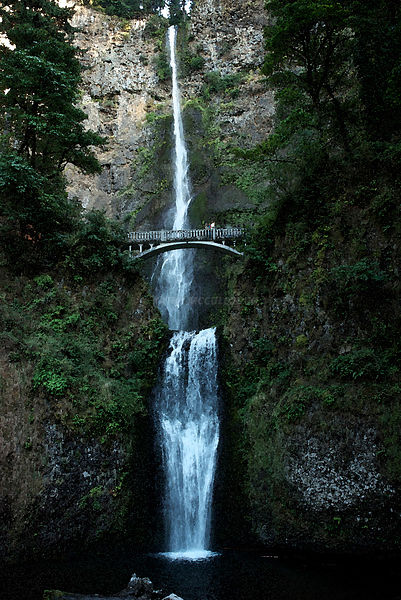 Multnomah Falls watercolor