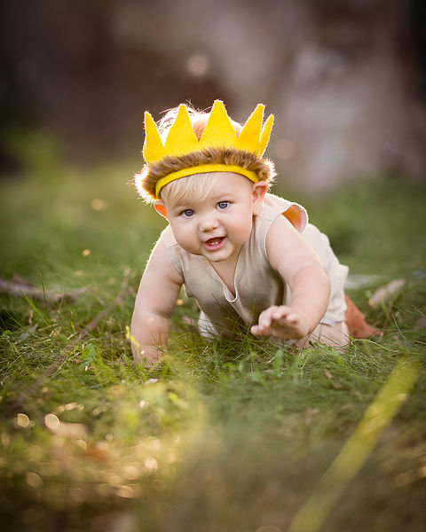 "Sample Session : ""Where the Wild Things Are"" 1st Birthday Cake Smash photos"