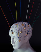 Neuropsychology visualisation