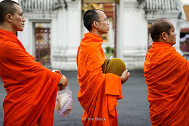 Buddhist monks seeking alms at Marble Temple in Bangkok, Thailand.