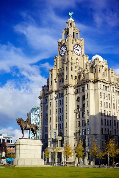 The Statue of Edward VII on Horseback standing Before the Royal Liver Building on a Sunny Day
