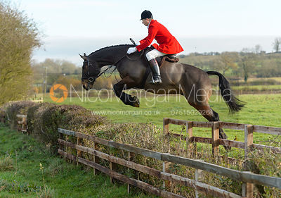 The Cottesmore Hunt at Deane Bank Farm 14/11 photos
