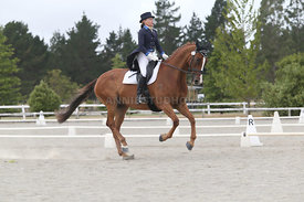 SI_Festival_of_Dressage_310115_Level_8_MFS_1138