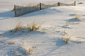 Pensacola Beach Fence and Dunes #2