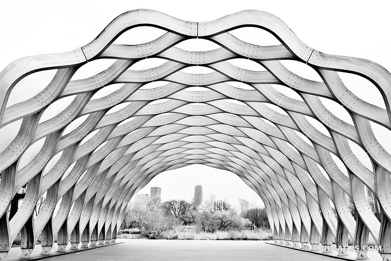 HONEYCOMB CURVACEIOUS WOOD PAVILION SCULPTURE LINCOLN PARK CHICAGO BLACK AND WHITE