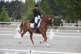 SI_Festival_of_Dressage_300115_Level_7_0267
