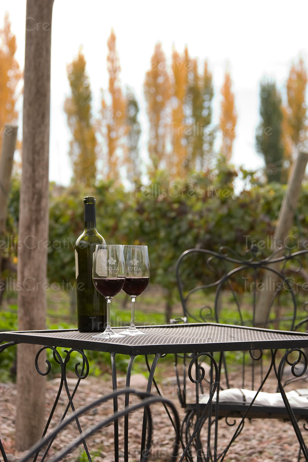 A bottle and two glasses of wine on a patio table