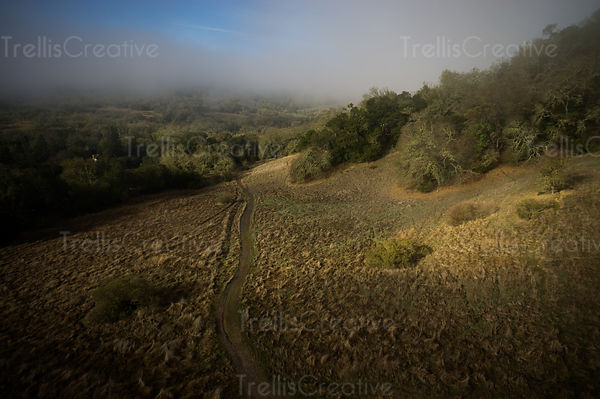 Aerial view of a misty morning in Sonoma Regional Park
