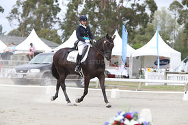 SI_Festival_of_Dressage_310115_Level_6_7_MFS_0635