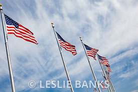American Flags Blowing in the Wind
