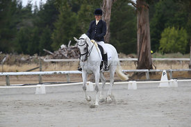 SI_Festival_of_Dressage_310115_Level_5_Champ_0824