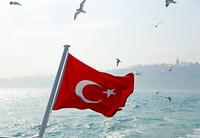 Seagulls flying over Turkey flag