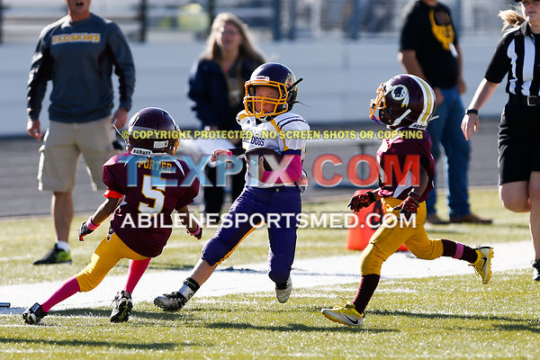 10-08-16_FB_MM_Wylie_Gold_v_Redskins-667