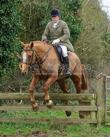 Johnnie Arkwright jumping a hunt jump near Knossington Spinney