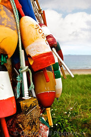 Buoys - West Beach