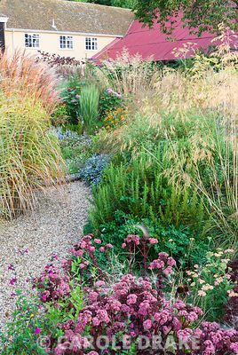 Gravel path leading into the central circular bed framed by miscanthus, Salvia officinalis 'Purpurascens', rosemary, Stipa gigantea, bronze fennel, Sedum 'Purple Emperor' and achillea. Broughton Buildings, Broughton, nr Stockbridge, Hants, UK
