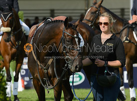 - show jumping phase, Burghley Horse Trials 2014.