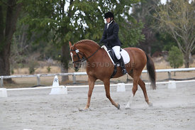 SI_Festival_of_Dressage_300115_Level_3_NCF_0105