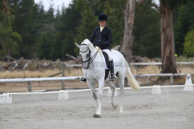 SI_Festival_of_Dressage_310115_Level_5_Champ_0825