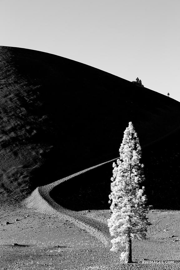 LONE TREE VOLCANIC ASH CINDER CONE VOLCANO LASSEN VOLCANIC NATIONAL PARK CALIFORNIA BLACK AND WHITE