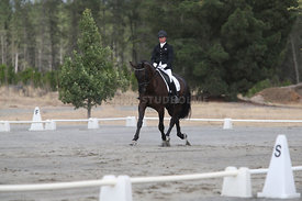 SI_Festival_of_Dressage_310115_Level_1_Champ_0699