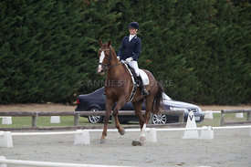SI_Festival_of_Dressage_300115_Level_4_JLT_0110