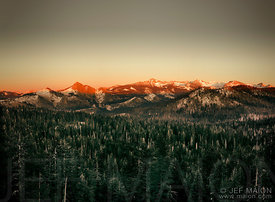 Pine forest and golden mountains at sunset