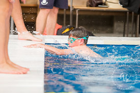 Waihi_Swimming_Sports_2017-22