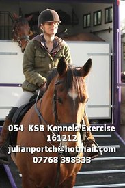 054__KSB_Kennels_Exercise_161212