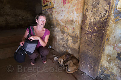 A tourist looks after an injured street dog with a large maggot wound on its shoulder, Varanasi, India. I had a rescue center come get the dog but it died a few hours later.