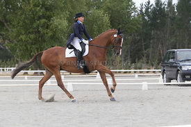 SI_Festival_of_Dressage_310115_Level_8_MFS_1143
