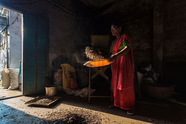 Spice Worker Sifting Waste from Pepper Corns