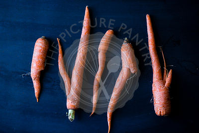 Imperfect carrots on a blue bakground.