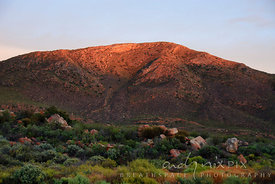 Red glow of sunrise on Klein Karoo mountains