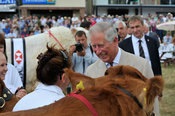 HRH Prince Charles meeting farmers at the 2013 Royal Welsh Show.