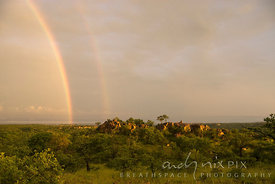A sunrise rainbow over a sanstone outcrop surrounded by mopane, baobab and other indigenous trees.