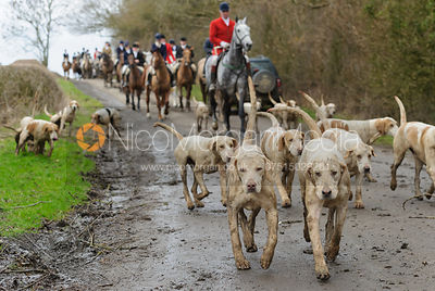 The Cottesmore Hunt at Bleak House 18/2 photos