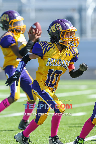 10-21-17_FB_Jr_PW_Wylie_Purple_v_Titans_MW00431