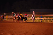 Night time action photo of horses racing at a track