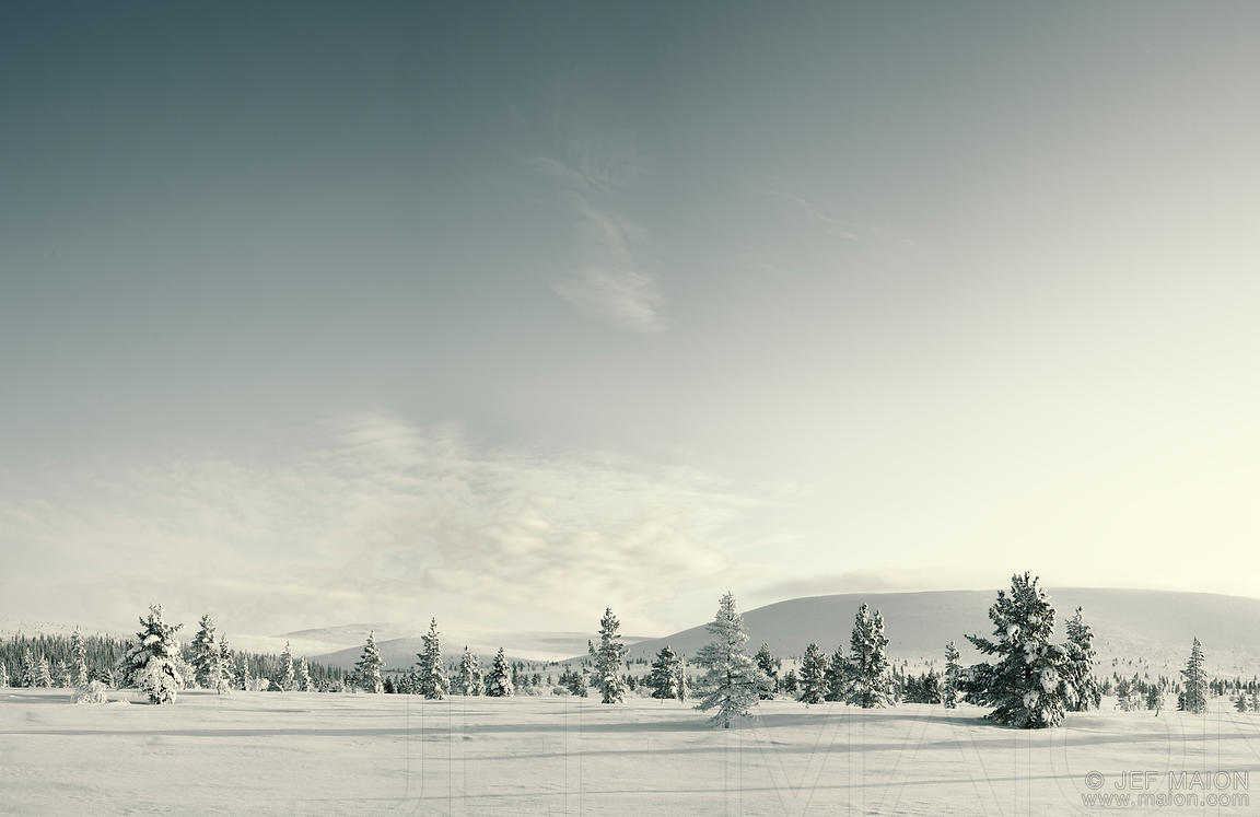 Vast snow landscape