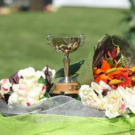 Norwood Gold Cup photos