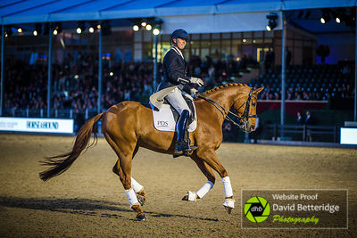 Royal_Windsor_Horse_Show_2017_036