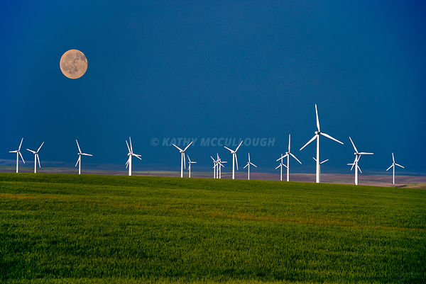 Moon over wheat and wind towers