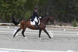 SI_Festival_of_Dressage_300115_Level_9_SICF_0474