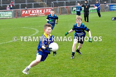 Mini Games | Tyrone v Roscommon | 050217 photos