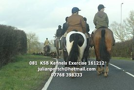 081__KSB_Kennels_Exercise_161212