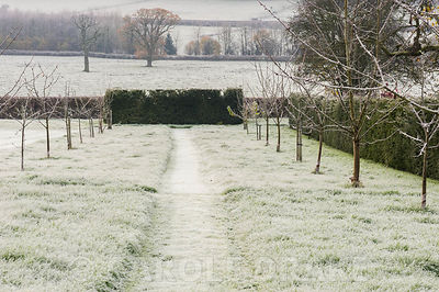 The Cherry Walk, leading towards a yew hedge, with countryside beyond.