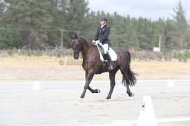 SI_Festival_of_Dressage_310115_Level_1_Champ_0681
