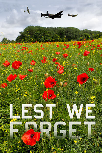 Remember them 'Lest we forget' poster version