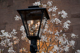 Gas lamp on the street in New York City.